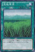 【ノーマル】湿地草原